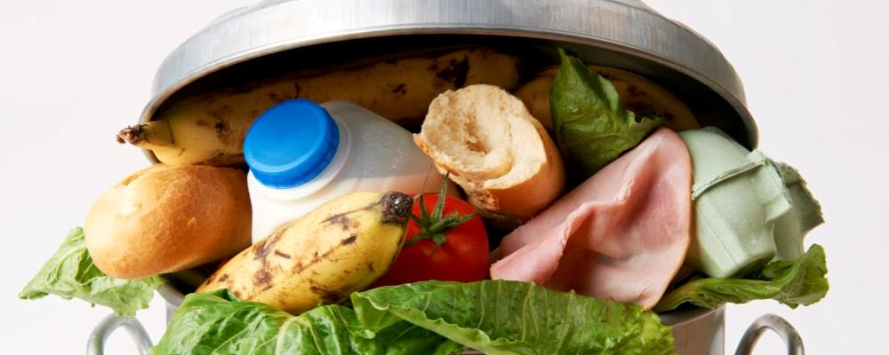 Food waste rises to 120 million tonnes